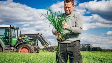 Photo of EGAlim : L'indépendance du conseil phytosanitaire gravé dans la loi