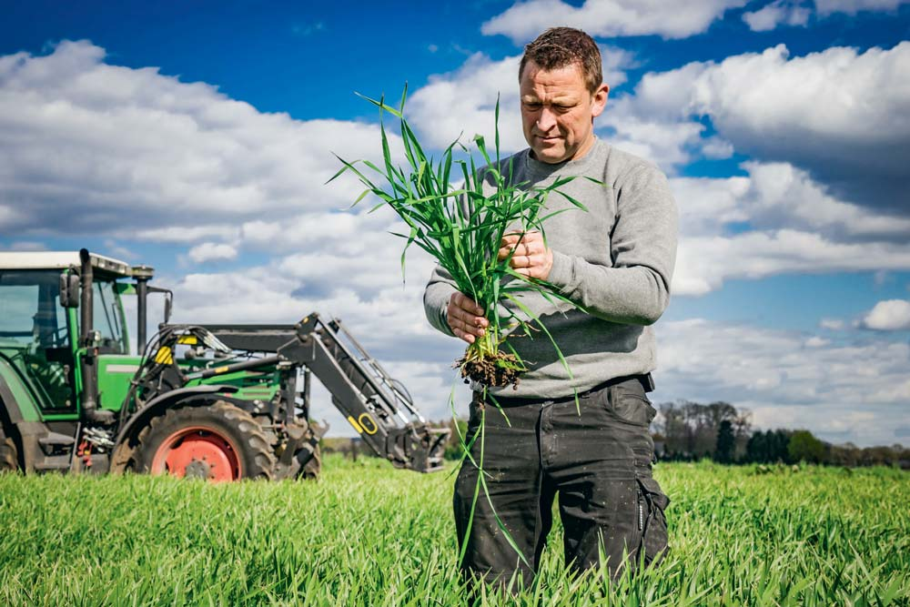 Pour acheter un produit phytosanitaire, tout agriculteur devra bientôt présenter un justificatif de délivrance d'un conseil annuel indépendant.