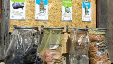 Photo of S'organiser pour gérer efficacement les déchets