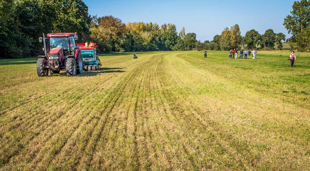 La Cuma d'Yffiniac utilise cet outil pour le semis direct des céréales et des couverts. Celui-ci est aussi adapté au sursemis de prairie.