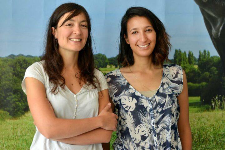 Clémence Morinière et Rim Chaabouni, permanentes de la Fédération des Races de Bretagne. Installées dans les locaux de la chambre régionale d'agriculture, elles sont employées par le Groupement d'intérêt économique « Élevages de Bretagne ».