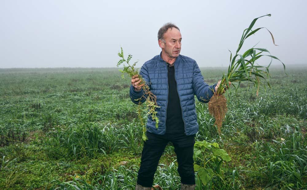 Jean-Luc Le Bénézic a présenté l'essai en cours, composé de dérobée et de couverts végétaux divers.