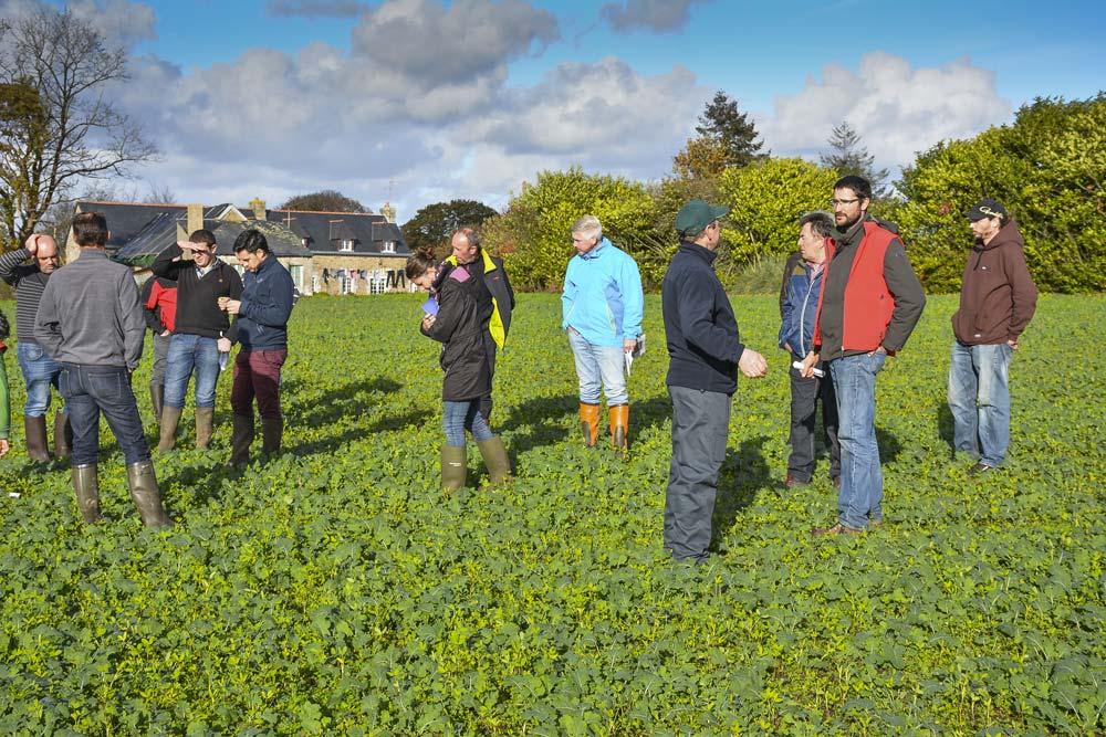 Une quinzaine d'agriculteurs ont visité la parcelle d'essai de David Christien (en rouge), mardi 13 novembre. La visite était organisée par le Gab et par Lorient Agglomération (BV du Scorff).
