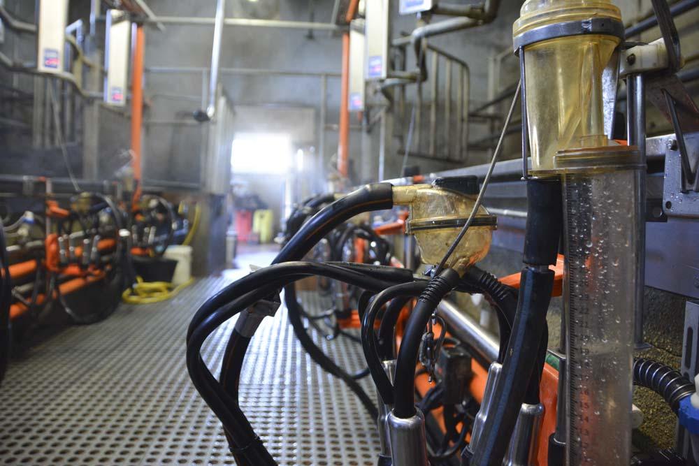 Le technicien vérifie la bonne circulation de l'eau dans l'installation, ainsi que la bonne répartition de l'eau de lavage.