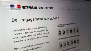Photo of Sortie du glyphosate : une plateforme en ligne pour accompagner les agriculteurs