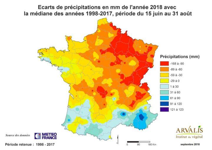 Sur la période de plus grande sensibilité des maïs, de mi-juin à fin août, le déficit pluviométrique en Bretagne et dans l'Ouest est resté modéré par rapport au reste du pays.