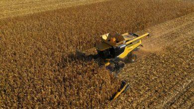 Photo of Un agriculteur établit deux nouveaux records mondiaux de récolte de maïs