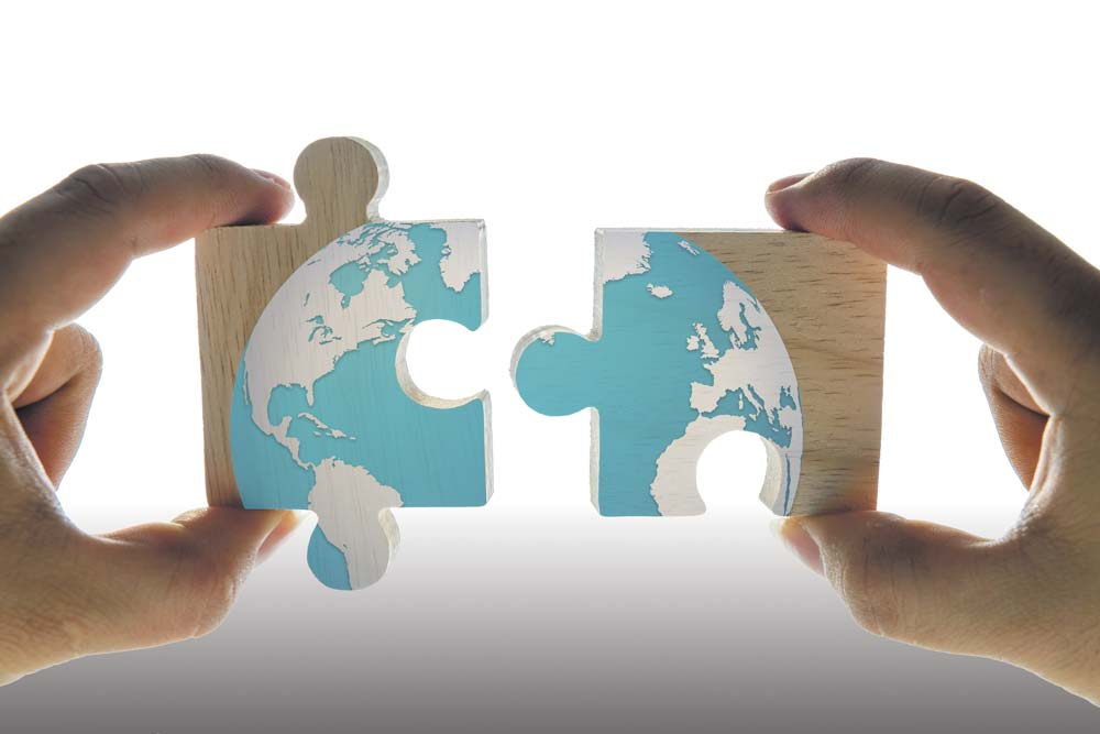puzzle-terre