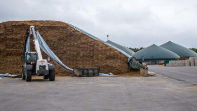Photo of Focus sur l'Allemagne laitière