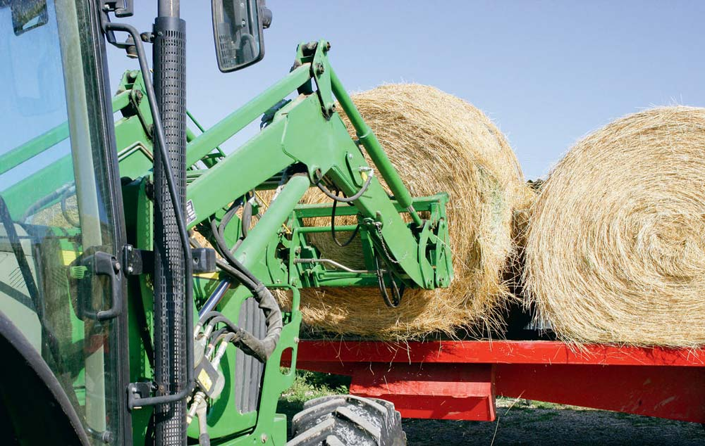 Face à la pénurie engendrée par la sécheresse, les éleveurs sont contraints d'acheter des fourrages et de la paille.