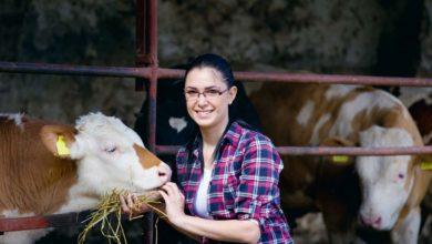 Photo of Regard de la société sur l'élevage : Recréer de la confiance