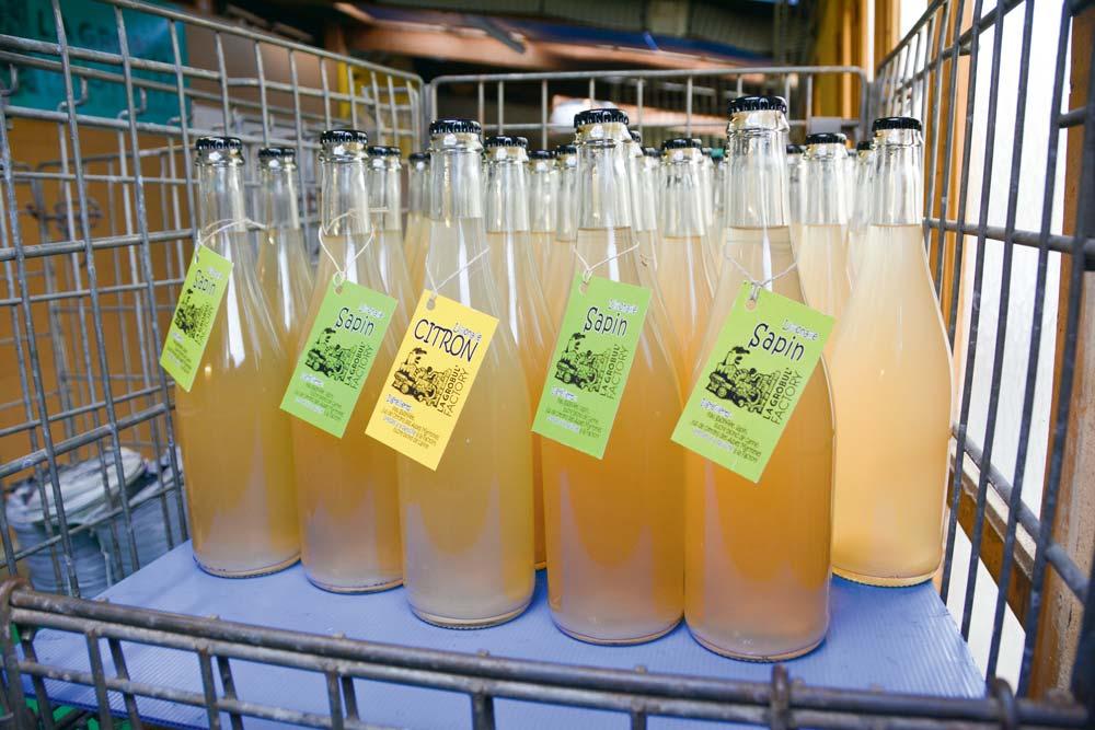 La Grobul' Factory propose deux saveurs de limonade : au citron ou au sapin. La fabrication se réalise dans une ancienne menuiserie, à Mellionnec (22).
