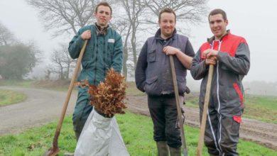 Photo of Des Jeunes Agriculteurs plantent 500 arbres pour demain
