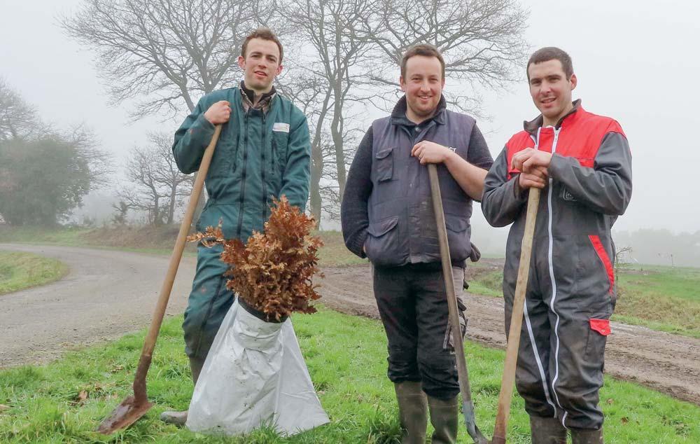 Mardi 5 février, les jeunes agriculteurs ont planté 250 arbres. D'ici quelques jours, 250 autres spécimens seront mis en terre.