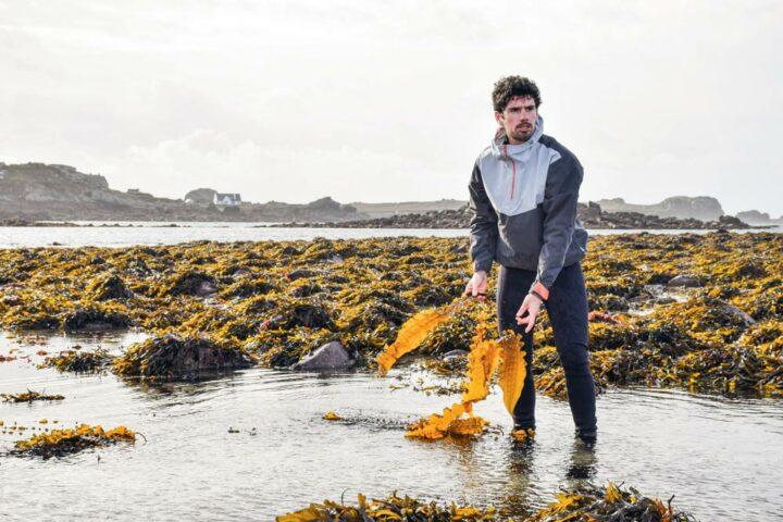 Récoltées à la main, les algues sont ensuite séchées à basse température — aux environs de 30 degrés — afin de conserver toutes leurs propriétés.
