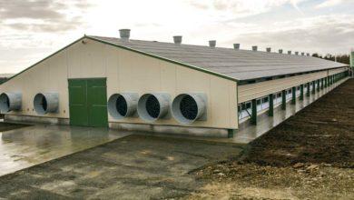 Photo of Aviculture : L'appel à projet PCAEA est ouvert