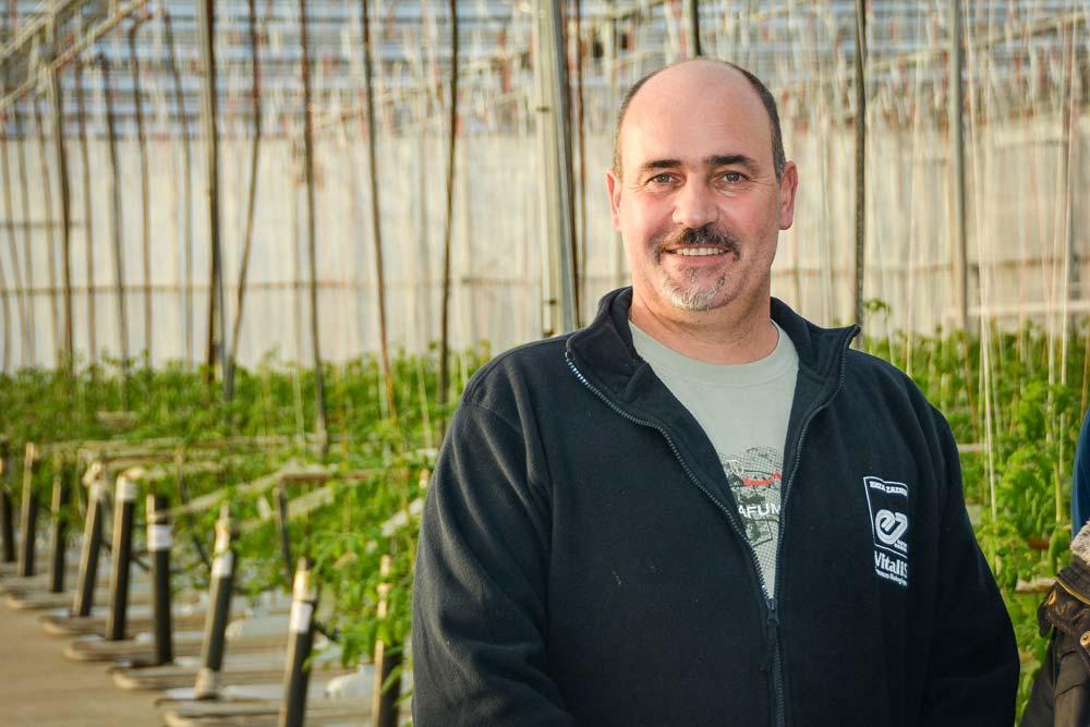 Loïc Conan, producteur de tomates à Plourivo, est très satisfait des saisonniers qu'il embauche depuis 15 ans. Ils ont au préalable suivi une formation technique.