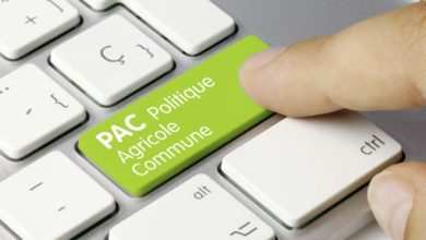 Photo of La Pac post-2020 annonce ses mesures