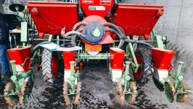 Photo of Maïs : soigner ses pratiques agronomiques