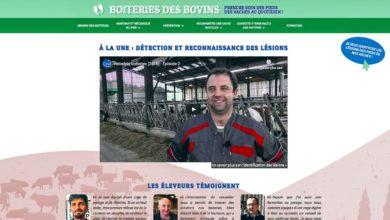 """Photo of """"Boiteries des bovins"""", un site dédié pour s'informer"""