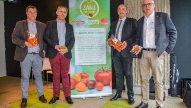Photo of Alliance autour des tomates sans pesticides