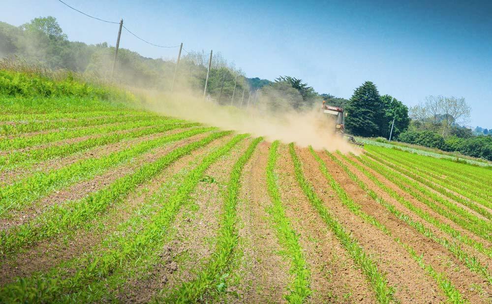 Un millimètre de sol qui part en poussière, c'est 10 m3 en moins sur un ha.