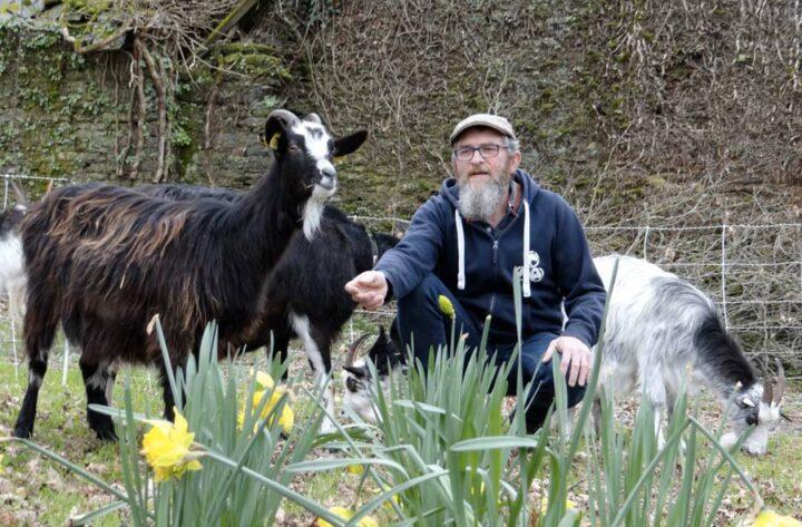 Denis Messager, fondateur d'Argoat Écopaturâge avec ses chèvres des Fossés.