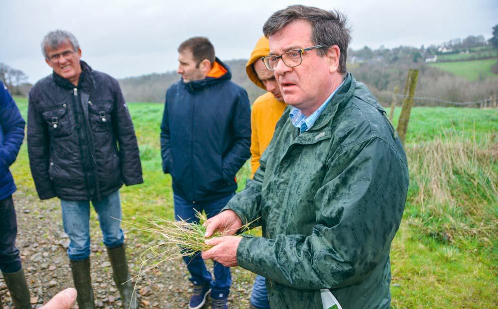 Michel Falchier, tenant une touffe d'agrostis stolonifère, a prodigué de précieux conseils aux agriculteurs en matière de lutte contre les vivaces.