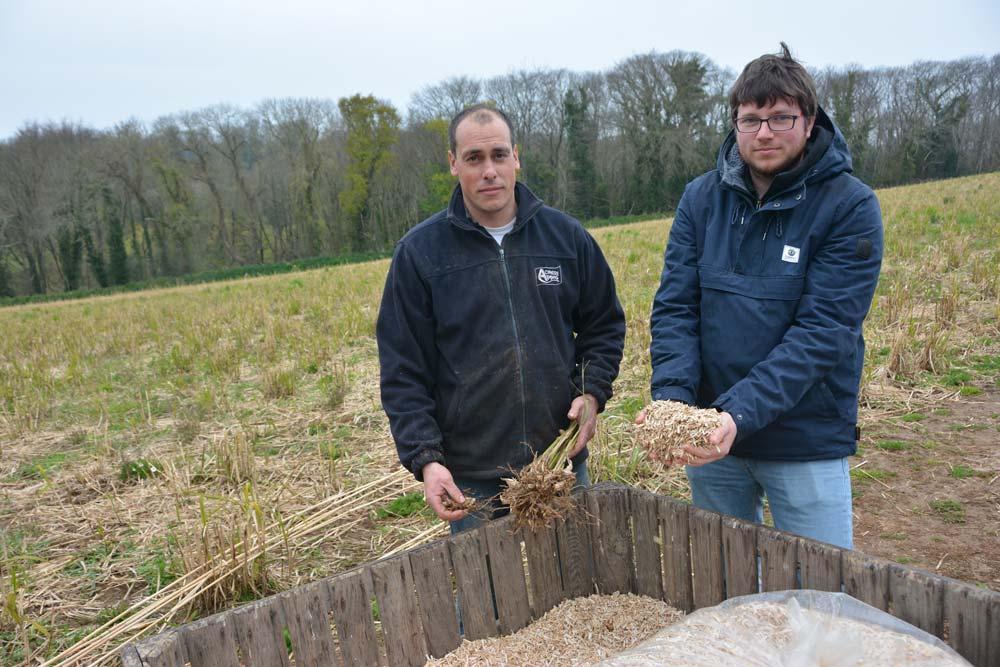 Sébastien Bouget, à gauche, a implanté un miscanthus dans des parcelles en pente. Ici accompagné de Vincent Salou, conseiller à la Chambre régionale d'agriculture.