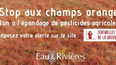 Photo of L'opération anti-désherbants de l'association Eaux et rivières passe mal