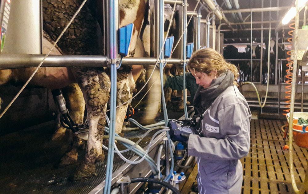 Le « Test pendant la traite » est réalisé sur une dizaine de vaches par un conseiller spécialiste à l'aide d'un appareil spécifique, le « Pulsographe PT 5.