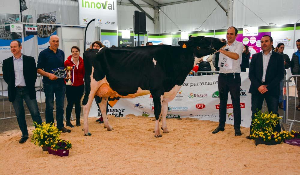 Capj Iroise a séduit le juge pour la qualité de son ossature. « C'est une vache raffinée », a -t-il expliqué.