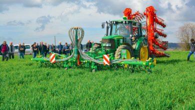Photo of Des solutions pour cultiver du blé en bio