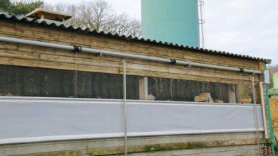 Photo of Un bâtiment porc renouvelé grâce aux filets brise-vent