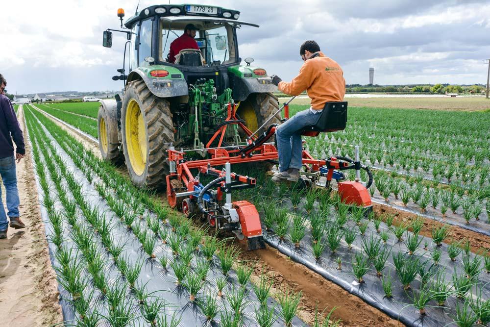 Romain Wittrisch guide la bineuse. L'outil peut aussi travailler seul, si le tracteur est équipé d'un guidage GPS.