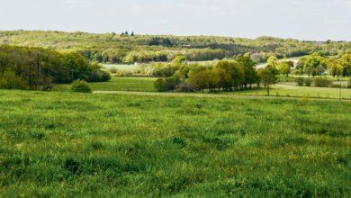 Photo of GES : l'agriculture française respecte ses objectifs