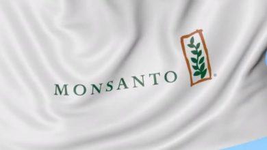 Photo of Soupçon de fichage chez Monsanto : «excuses» du groupe Bayer, plainte du Monde