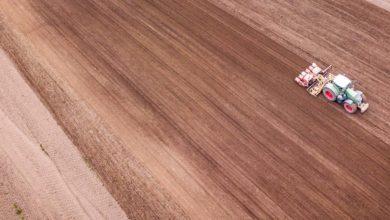 Photo of Des surfaces en hausse pour le maïs, le tournesol et records en soja
