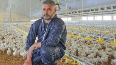 Photo of Pododermatite : Une problématique qui prend de plus en plus de place dans les élevages