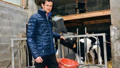 Photo of Un dimanche pour découvrir les fermes