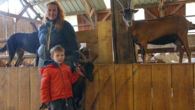 Photo of Un premier concours en chèvre alpine