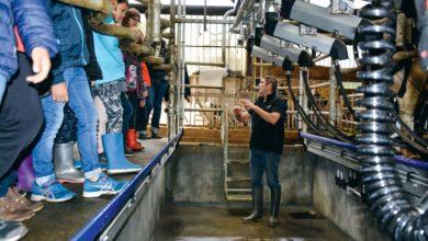 Photo of Portes ouvertes dans les fermes avant le comice