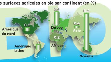 Photo of Le marché mondial du bio est surtout occidental