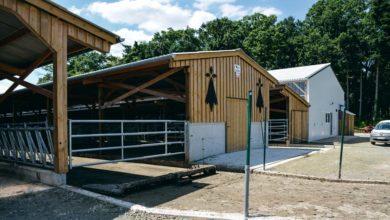 Photo of Lait : Un bâtiment semi-ouvert économique