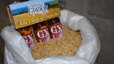 Photo of De la bière à l'orge de Groix