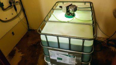 Photo of Des microalgues dans l'eau de boisson des pondeuses