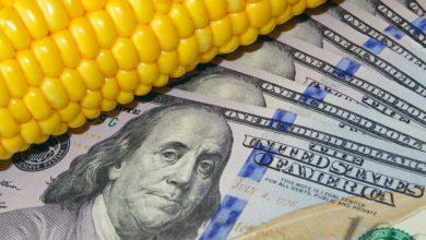 Photo of USA, la fin des haricots ?