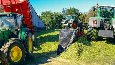 Photo of Maïs : Rigueur et organisation autour du tasseur