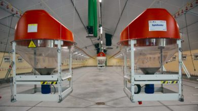 Photo of Un distributeur rotatif pour alimenter les volailles