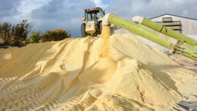 Photo of Bientôt les premiers chantiers en grain humide